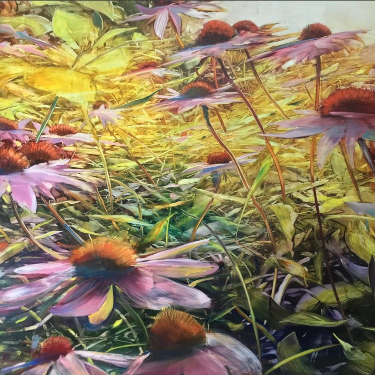 Coneflowers at speed Oil on anodized aluminum, 36x36 (2017)