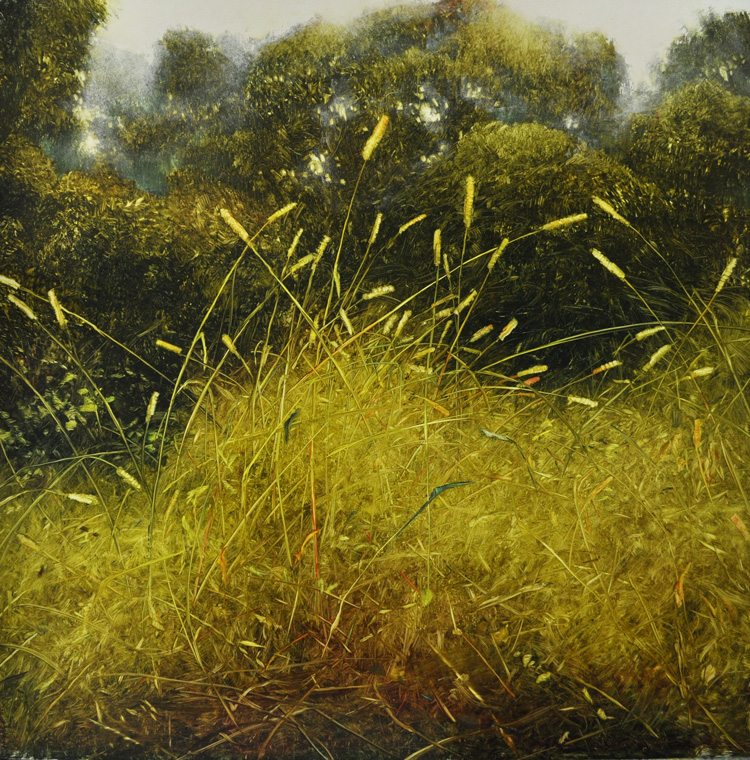 Dancing Grass Oil on laminated aluminum, 24x24